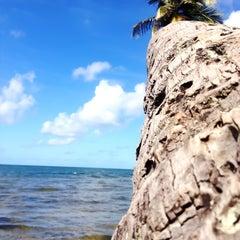 Photo taken at Praia do Forte by Marcelo J. on 6/2/2013