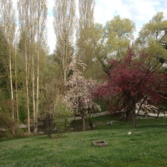 Photo taken at Seğmenler Parkı by Barış A. on 4/11/2013
