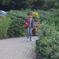Photo taken at International School of Amsterdam by Evren I. on 8/18/2014