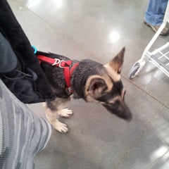 Photo taken at Costco by Kevin H. on 3/13/2013