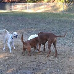 Photo taken at Oakhurst Dog Park by Aaron G. on 11/10/2012