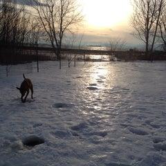 Photo taken at Burlington Waterfront Dog Park by Roscoe M. on 1/13/2014