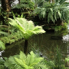 Photo taken at Garfield Park Conservatory by Jerome H. on 2/3/2013