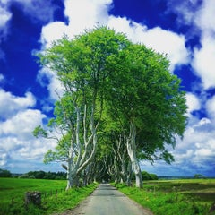 Photo taken at The Dark Hedges by Felipe S. on 6/13/2015