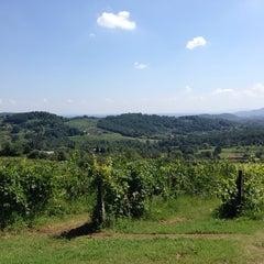 Photo taken at Fattoria Maionchi by Leo P. on 8/8/2014