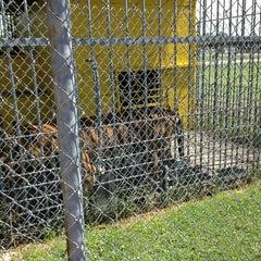 Photo taken at Tiger Truckstop by Nancy L. on 6/9/2013