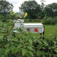 Photo taken at Rodale Institute by Sheri C. on 7/28/2013