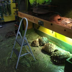 Photo taken at Critter Cabana - Wilsonville by Patrick S. on 2/12/2013