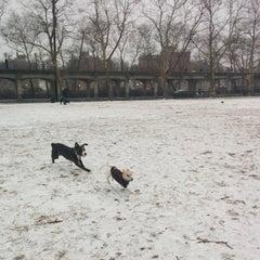 Photo taken at Rockaway Park Dog Run by Matt G. on 12/14/2013