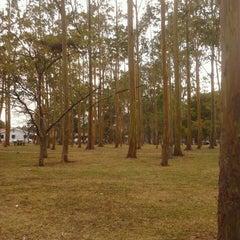 Photo taken at Parque Metropolitano La Sabana by Mario C. on 3/17/2013