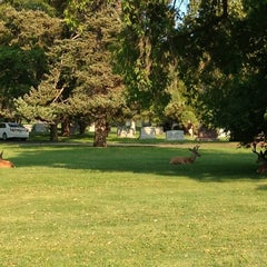 Photo taken at Mount Olivet Cemetery by Doug B. on 7/22/2014