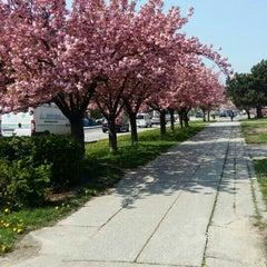 Das Foto wurde bei Pekná cesta (tram, bus) von Adrika P. am 4/13/2016 aufgenommen