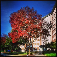 Photo taken at Stoke Hall by UNH Students on 10/3/2013