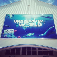 Photo taken at Underwater World by Jacky C. on 1/22/2013