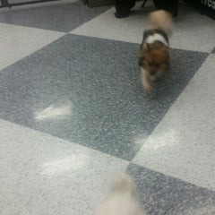 Photo taken at Petco by Juanita R. on 3/20/2016