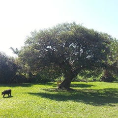 Foto tirada no(a) Parque da Juventude por Luiz Fabiano V. em 3/30/2013
