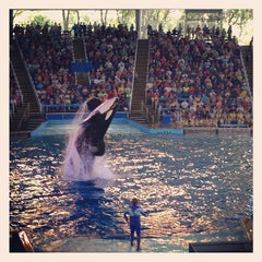 Photo taken at Shamu Theater by Ivan S. on 8/2/2013