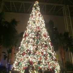Photo taken at Gaylord Opryland Resort and Convention Center by Joey A. on 12/16/2012