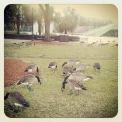 Photo taken at University of North Florida by zellie m. on 11/27/2012