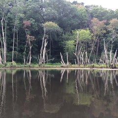 Photo taken at Mass Audubon Ipswich River Wildlife Sanctuary by Amanda C. on 8/22/2014