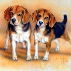 Photo taken at Moyer Beagles by Julie M. on 7/19/2013