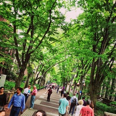 Photo taken at Locust Walk by Lauren D. on 5/11/2013