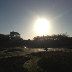Photo taken at Southsea Rose Garden by marymaryw on 2/17/2013