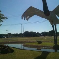 Photo taken at Aeroporto Internacional de Campo Grande (CGR) by Fly B. on 7/18/2012