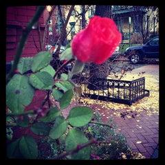 Photo taken at Ledroit Park Gate by James B. on 12/9/2012