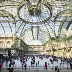 Photo taken at Grand Palais by Franck C. on 1/5/2013