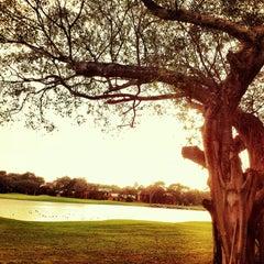 Photo taken at Campo de Golf Playacar by robertoavila.com on 5/5/2013