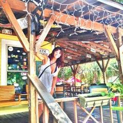 Photo taken at Green Turtle Tavern by Sean S. on 6/23/2013