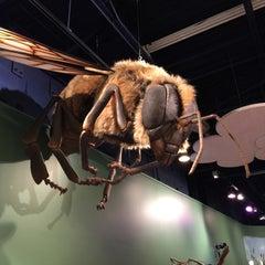 Photo taken at Children's Museum of Virginia by Alex W. on 2/10/2015