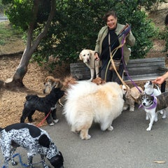 Photo taken at St. Mary's Park Dog Run by Donnie B. on 7/15/2015