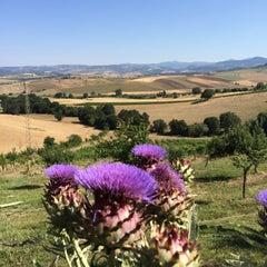 Photo taken at Relais Villa Acquaviva by Vizio on 7/1/2015