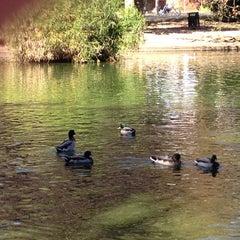 Photo taken at McKinley Park by Elizabeth F. on 10/13/2012