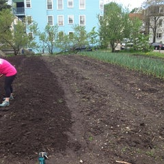 Photo taken at The Food Project -West Cottage Farm by Georgiana M. on 5/17/2014
