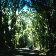 Photo taken at Tunnel Of Trees by Shelley S. on 6/21/2013