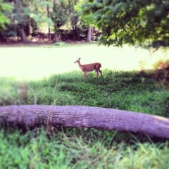 Photo taken at Rock Creek Golf Course by Michael C. on 8/26/2013