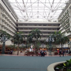 Photo taken at Orlando International Airport (MCO) by M. G. on 10/20/2013