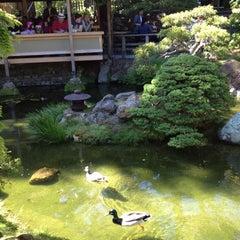 Photo taken at Japanese Tea Garden by Lynn on 6/3/2012