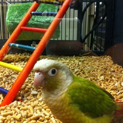Photo taken at PetSmart by Rob L. on 8/4/2012