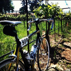 Photo taken at Wente Vineyards by Neil T. on 4/23/2012