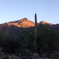Photo taken at Sabino Canyon Recreation Area by Mariolis on 10/5/2012