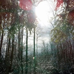 Photo taken at Sherrill Brook Park by Diane C. on 2/23/2014