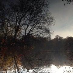 Das Foto wurde bei Neuer See von Bunz am 11/11/2014 aufgenommen