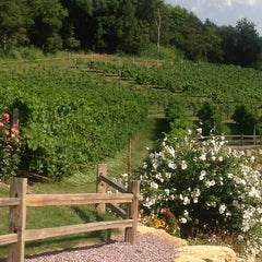 Photo taken at Wollersheim Winery by Charlotte M. on 9/1/2013