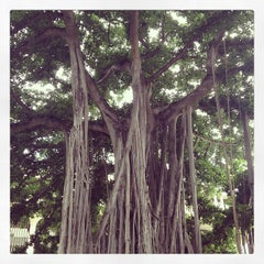 Photo taken at Queen Liliʻuokalani Statue by Tim B. on 1/1/2013