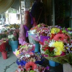 Photo taken at Dangwa Flower Market by Nico R. on 1/25/2013