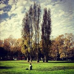 Photo taken at Washington Square Park by Jason C. on 11/15/2012